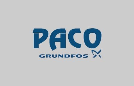 Paco pumps